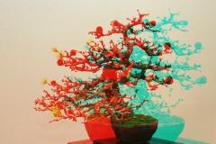 3D Anaglyph Bonsai: Lärche