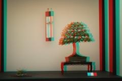 3D Anaglyph Bonsai: Tokonoma 1